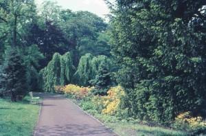 OL-Schloßgarten-21.05.1967-G-NJ-KF